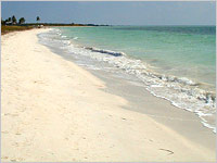 white_sand_beach_egypt